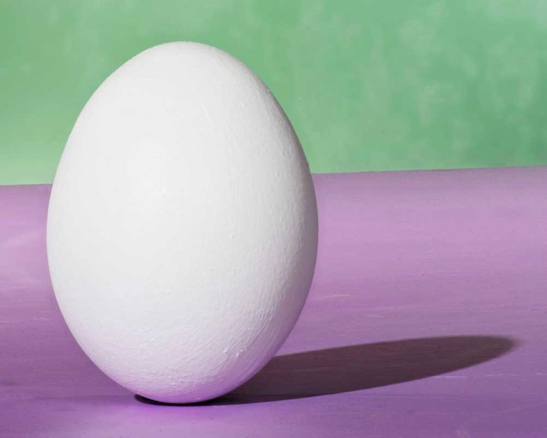 An image of eggs by Doug Howell
