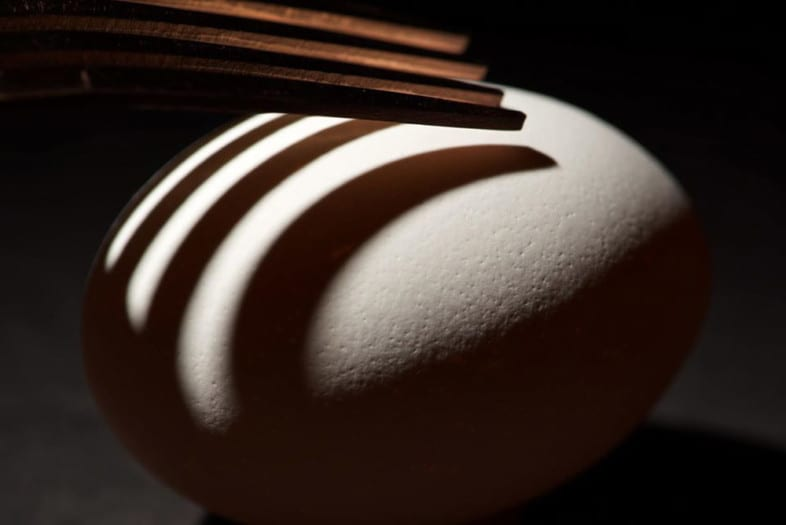 An egg photograph by Greg Clancy