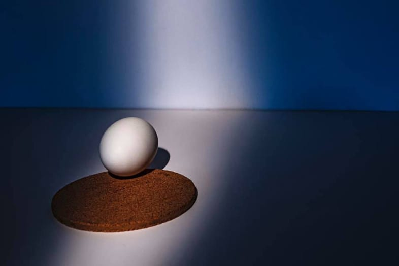 An egg photograph by Jermaine Beckley