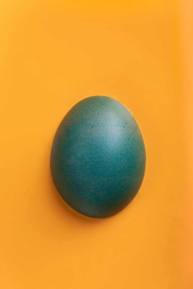 An image of eggs by Murray Ostle