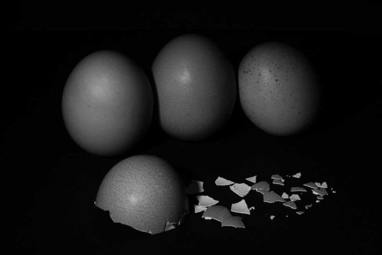 An image of eggs by Paulo Álvares