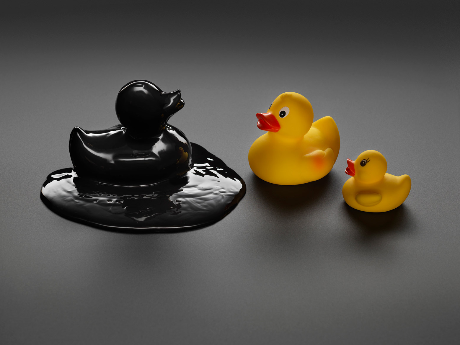 Still life photo of rubber ducks symbolising the effect of pollution on wildlife